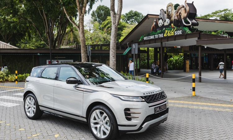 Zoolander : Land Rover Singapore's 'Camping at the Zoo'